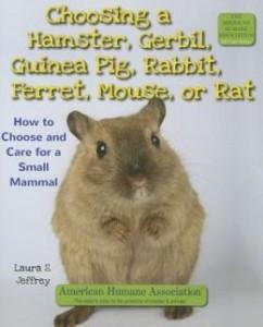 Choosing a Hamster